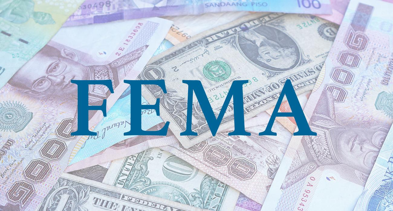 FEMA Advisory Services